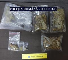 Sase tineri au fost retinuti de DIICOT, in Constanta, pentru trafic de droguri