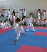 Satori Slobozia a dominat Cupa Atemi la karate
