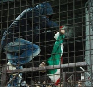 Scandalul fotbalistic romano-maghiar ia amploare
