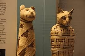 Scandalul mumiilor goale din Egiptul antic