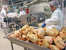 Scandalul salmonella: Romanii au prins frica de puiul din magazin - sondaj IRES