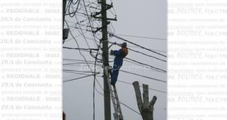 Schimbari in structura Companiei Transelectrica SA