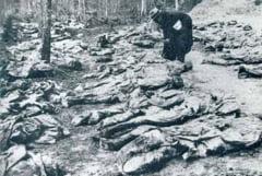 Se cere comisie parlamentara pentru aflarea adevarului - anchetati masacrul de la Fantana Alba