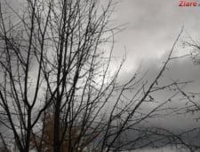 Se circula prin burnita si ceata densa pe A3. Mai e si cod galben de polei in zona
