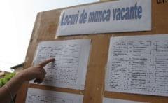 Se fac angajari, 70 de locuri de munca vacante in Salaj
