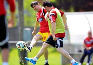 Se pregateste tradarea deceniului in fotbalul romanesc: E posibil ca Piturca sa mearga la Dinamo
