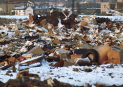 Secretar de stat despre evaziunea din domeniul reciclarii: Sa eliminam colectorii care apar in carute