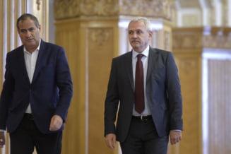 Secretarul general al PSD spune ca nu e oportuna amnistia: Ar fi o greseala sa-i fie retras sprijinul politic lui Firea