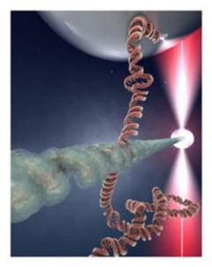 Secretul vietii descifrat: Codul ADN poate fi reparat