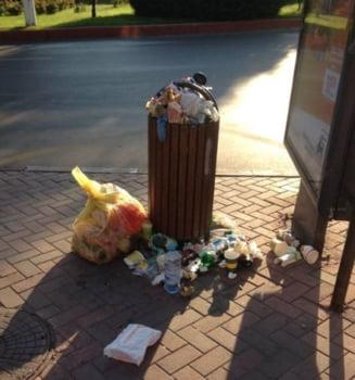 """Sectorul 3, sufocat de gunoaie: Primarul da vina pe Rosal, compania spune ca Negoita """"minte cu nerusinare"""""""