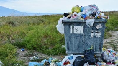 Sectorul din Bucuresti care plateste cea mai mare taxa de gunoi din tara. Firma de salubritate primeste de 3 ori mai mult decat incaseaza Primaria