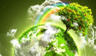 Sectorul energetic, resuscitat: Cresc fuziunile si achizitiile in domeniu