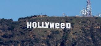 Semnul Hollywood a fost vandalizat in ajunul Anului Nou - pe dealul din California a fost scris Hollyweed
