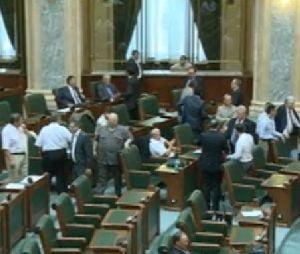 Senatul a respins cererea presedintelui de reexaminare a legii referendumului (Video)