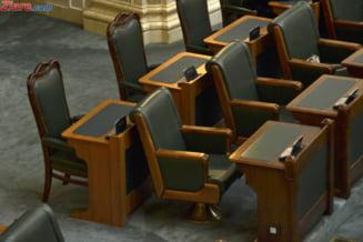 Senatul a respins doua proiecte UDMR, aflate de 16 ani in Parlament