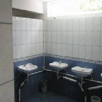 Sex in toaleta scolii intre doi elevi de 13 si 14 ani