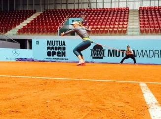 Sharapova, cuvinte mari despre turneul lui Ion Tiriac