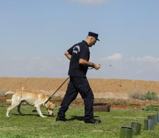 Sherlock Holmes al cainilor politisti din China a fost clonat. Inceputul unei noi ere in politie?