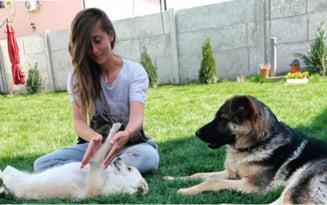 Si-a salvat de la moarte propriul catel si acum face terapie cu caini. Tanara care a facut o afacere dintr-o pasiune
