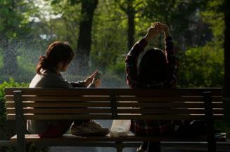 Sibiul va avea primul parc amenajat pe locul unei foste gropi de gunoi