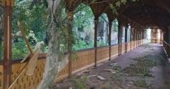 Siemens doneaza 10.000 de euro pentru refacerea parcului central din Buzias