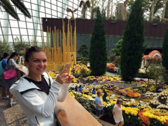 Simona Halep dezvaluie planurile pentru 2016