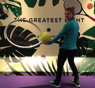 Simona Halep ii ia partea lui Andy Murray in scandalul cu Maria Sharapova
