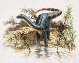 Sit unic al unor dinozauri ce au trait in Transilvania, redescoperit in apropiere de Hateg de o echipa condusa de un paleontolog maghiar