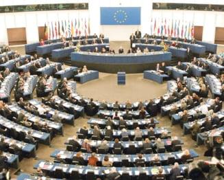 Site anti-imigranti in Olanda: Parlamentul European se va pronunta saptamana viitoare