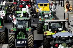 Situatia aberanta care-i exaspereaza pe fermieri: De ce e laptele mai ieftin decat apa plata in UE