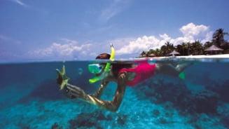 Snorkeling in Caraibe. Topul celor mai frumoase destinatii