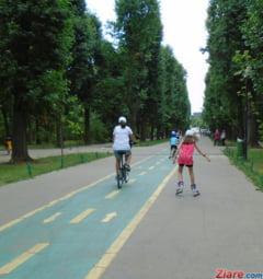 Soferii sunt mai grasi decat biciclistii - vezi diferenta de greutate (studiu)