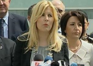 Solutiile de avarie ale Elenei Udrea (Opinii)