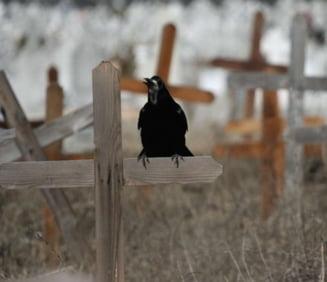 Somnul de veci, vegheat cu camere video in cimitirele din Iasi