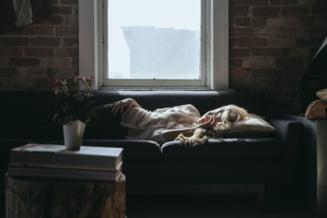 Somnul din timpul zilei ne ajuta sa luam decizii mai bune