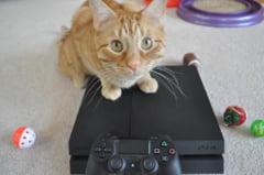 Sony va lansa o noua versiune a consolei Play Station 4: Cele mai noi informatii despre PS4 Neo