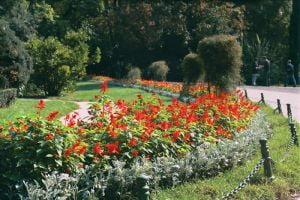 Sorin Oprescu vrea sa umple parcurile cu biblioteci si pasari exotice