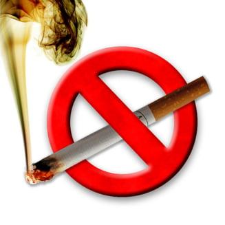 Sotia lui Mitrea vrea sa interzica fumatul in restaurante, baruri, cluburi si discoteci (Video)