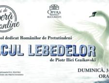"""Spectacolul de balet """"Lacul lebedelor"""", dedicat Romanilor de Pretutindeni"""