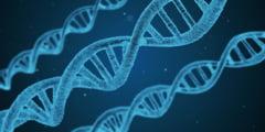 Speranta de viata este scrisa in ADN, astfel ca unii oameni vor trai mai putin decat altii indiferent ce ar face