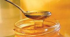 Starea vremii schimba pretul mierii de albina. Cel mai prost an din ultimii 10 pentru apicultorii din Maramures
