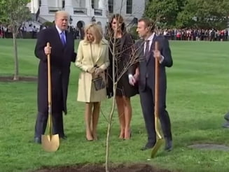 Stejarul plantat de Macron si Trump la Casa Alba a disparut si nu se stie unde e