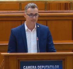 Stelian Ion (USR) ii cere lui Tudorel Toader sa spuna public ce a facut pentru aducerea in tara a lui Radu Mazare dupa condamnarea definitiva