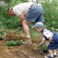 Stii sa gradinaresti alaturi de copilul tau?