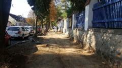 Strada Kos Karoly, o amenintare pentru viata pietonilor?