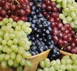 Strugurii, adevarate bombe antioxidante