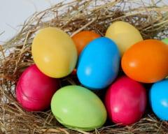 Studentii din Timisoara au printat 3D oua de Paste