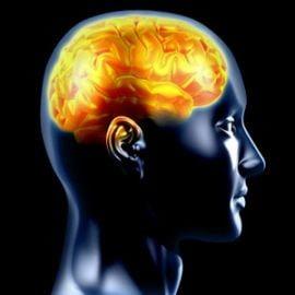 Suicidul este determinat de schimbari ale creierului