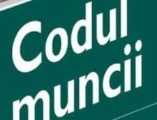 Sulfina Barbu: Peste un milion de locuri de munca aduse de Codul Muncii