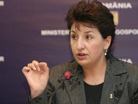 Sulfina Barbu: Propunerile economice ale PSD ar falimenta Romania